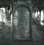 Grabstein von Salomon Mayer (Meyer)
