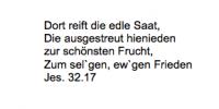 <b>Hirschfeld David</b> <br> <i>Rückseite</i> <br>