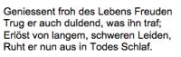 <b>Brunner Robert</b> <br> <i>Rückseite</i> <br>