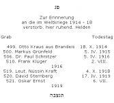 <b>Soldaten im Ersten Weltkrieg</b>