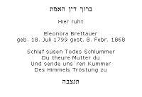 <b>Brettauer Eleonora</b>