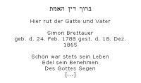 <b>Brettauer Simon</b>