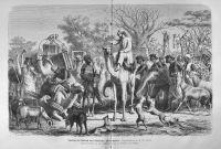 Darstellung der 'Afrikanischen Thier-Expedition',  in: Die Gartenlaube, 1876, 844