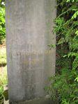 Grabstein für Rosalie Burgauer (geb. David)