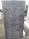 Grabstein Rosa Seelig geb. Hirschfeld